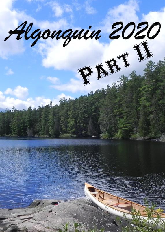 Algonquin 2020 Part 2