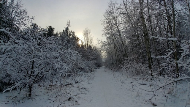 March Highlands, Kanata Ontario