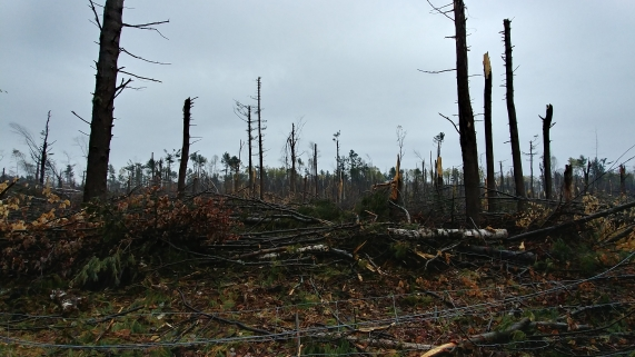Bruce Pit, Nepean, Ontario, after the tornado.