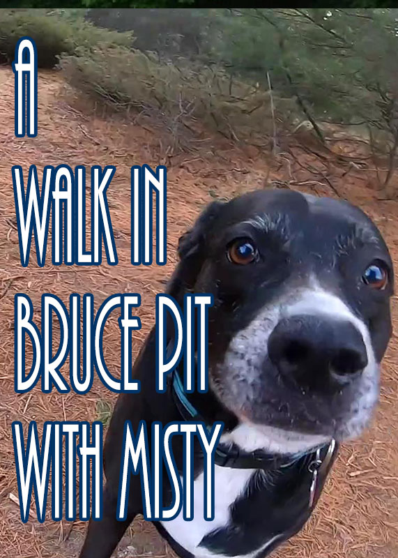 A Walk in Bruce Pit With MIsty 2019